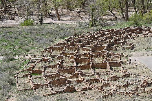 Tyuonyi Ruins, Bandelier National Monument by Catherine Sherman