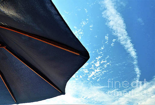 Sharon Williams Eng - Umbrella and Blue Sky
