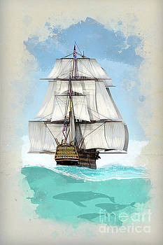 Under sail by John Edwards