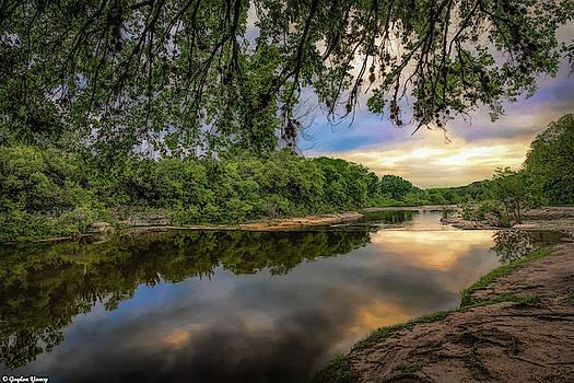 Under The Big Oak Tree by Gaylon Yancy