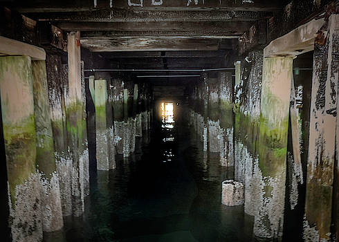 Under the Pier by Max Huber