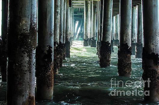Under the Santa Monica pier, Ca by Micah May