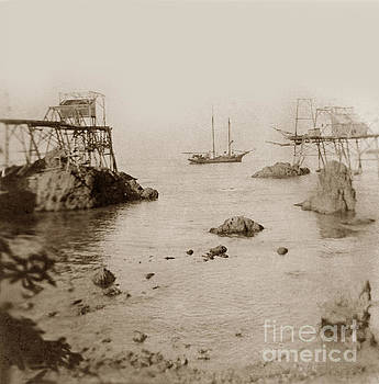 California Views Archives Mr Pat Hathaway Archives - Unidentified two masted schooner at Westport  Landing