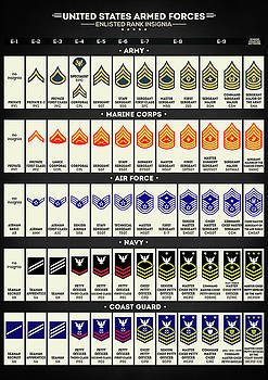 United States Armed Forces Enlisted Rank Insignia by Zapista Zapista