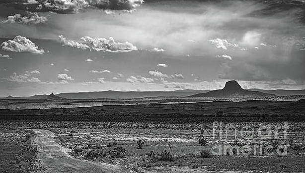 Up The Dirt Road by Susan Warren