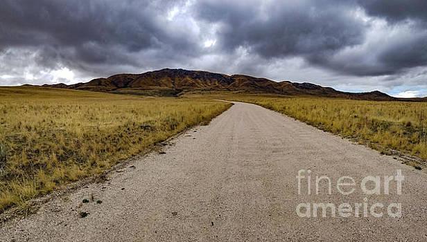 Uphill by Randy Kostichka
