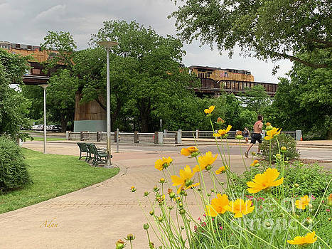 Felipe Adan Lerma - Urban Pathways Butler Park at Austin Hike and Bike Trail with Train