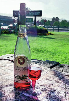 Michelle Constantine - V. Sattui Winery Gamay Rouge 1993