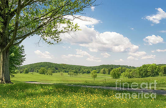 Valley Forge 0517A by Howard Roberts