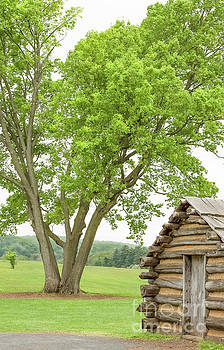 Valley Forge Landscape 0504B by Howard Roberts