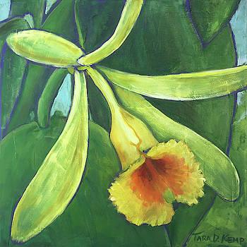 Vanilla Orchid by Tara D Kemp