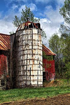 Vermont Farmhouse Silo  by Betty Pauwels
