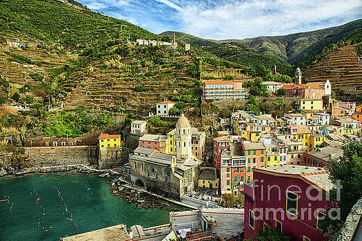 Wayne Moran - Vernazza Cinque Terre Town and Hills Above
