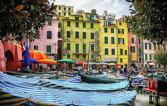 Wayne Moran - Vernazza Cinque Terre Town Center Boats