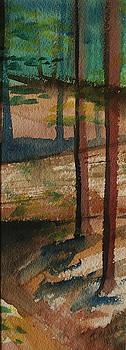 Vertical Path by Tammy Nara