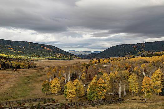 Veta Pass Autumn by Jim Allsopp