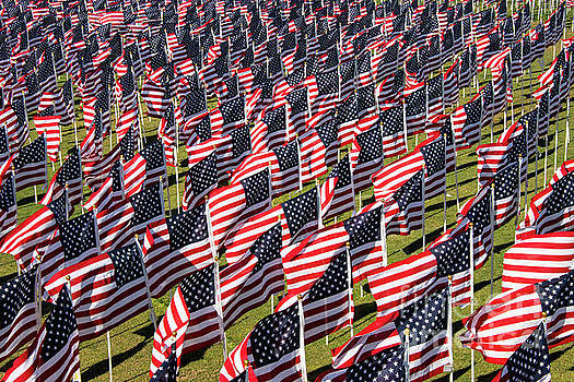 Bob Phillips - Veterans Day Field of Honor Four