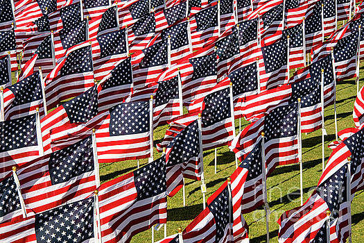 Bob Phillips - Veterans Day Field of Honor One