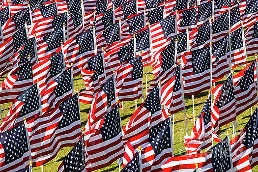 Bob Phillips - Veterans Day Field of Honor Three