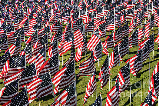 Bob Phillips - Veterans Day Field of Honor Two