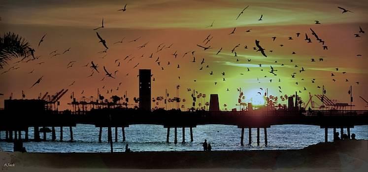 Veterans Pier / Belmont Shore  SUNSET II by John R Williams