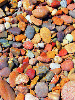 Vibrant Rock Bed by Grant Osborne