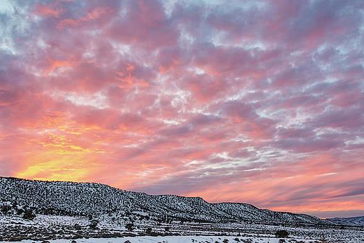 Vibrant Sunset by Denise Bush