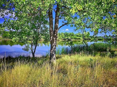 Viele Lake 4 by Dan Miller