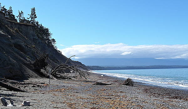 View from Dungeness Spit by Michele Myers