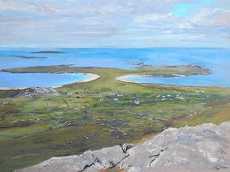 View from Errisbeg by Michael Camp
