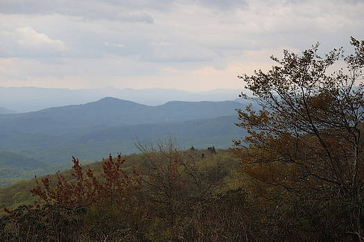 View From Trail Beside Linn Cove Viaduct 2 by Cathy Lindsey