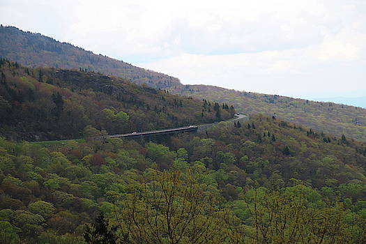 View From Trail Beside Linn Cove Viaduct by Cathy Lindsey