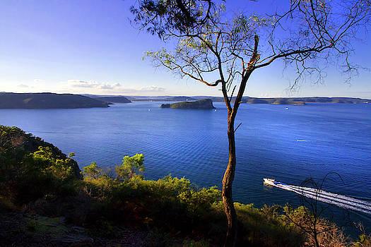 View From West Head Sydney by Miroslava Jurcik