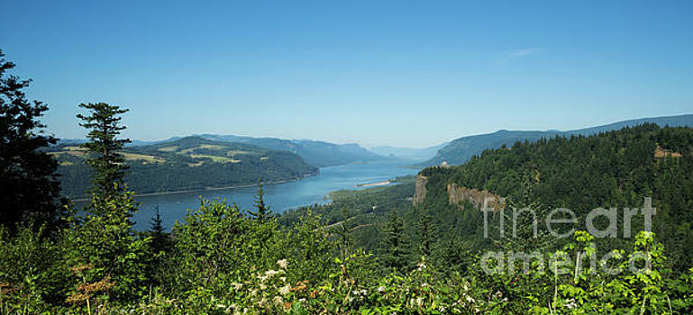 View of Columbia River and Vista House by Charmian Vistaunet