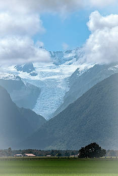 View of Fox Glacier New Zealand by Joan Carroll