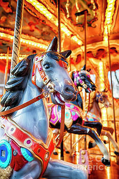 View of Horses on a Classic Carousel by George Oze