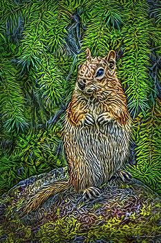 Vigilant Chipmunk by Joel Bruce Wallach