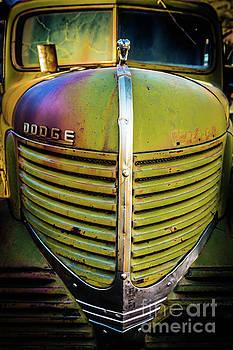 Vintage Abandoned Dodge Truck by Edward Fielding