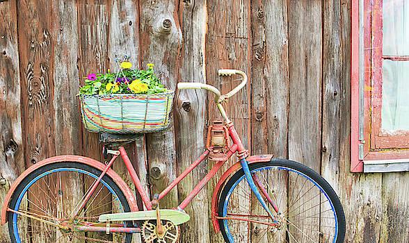 Vintage Bicycles by Nick Mares