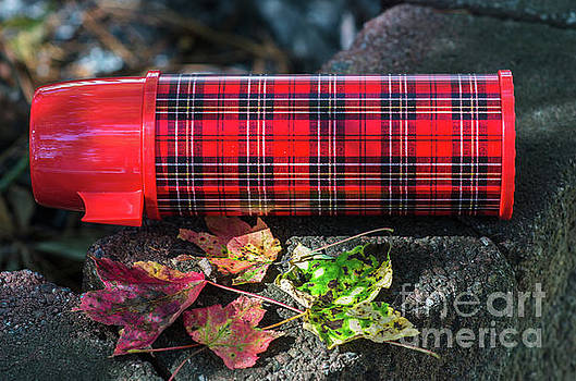 Dale Powell - Vintage Plaid Thermos