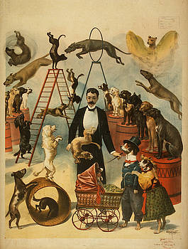 Vintage poster - Circus by Vintage poster - Circus