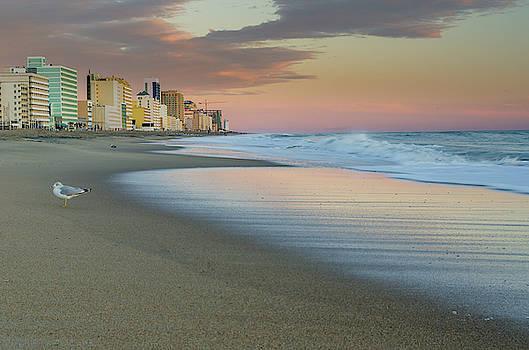 Virginia Beach Morning by Mike O'Shell