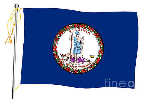 Virginia State Waving Flag And Flagpole by Bigalbaloo Stock