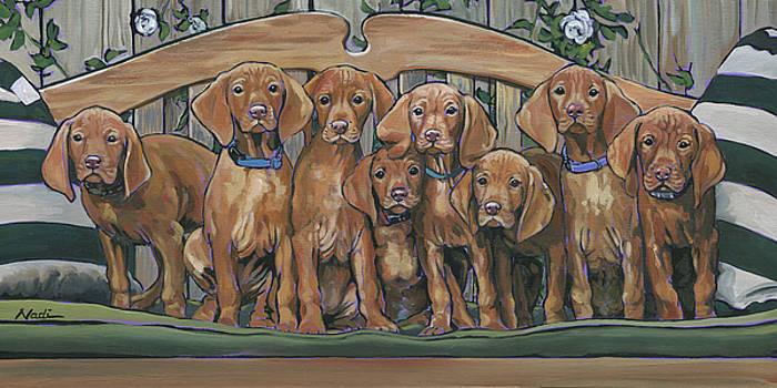 Vizsla Puppies 8 by Nadi Spencer