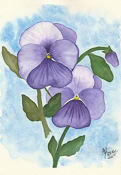 Violet Pansies by Martina Fagan