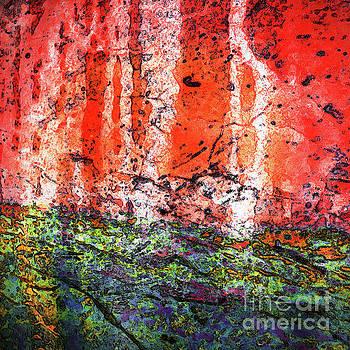 Vulcanic Experience by Margaret Koc