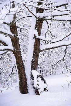 Wagon Wheel Snowy Scene by Alana Ranney