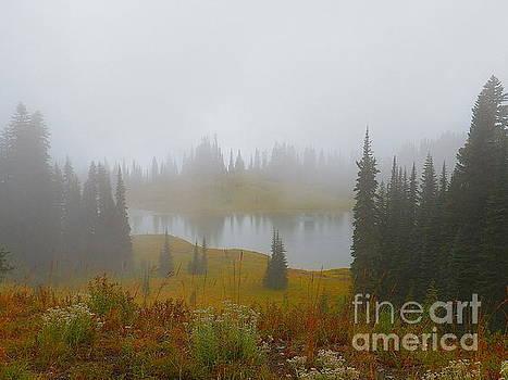 Waking Up In The Mountains Mount Rainier National Park Washington  by Art Sandi