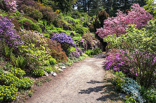 Jenny Rainbow - Walk in Spring Eden. Colorful Path 2