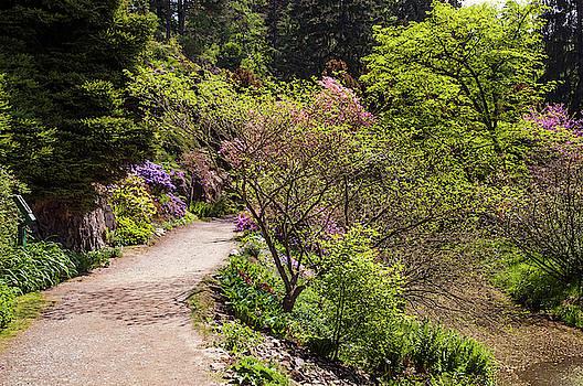 Jenny Rainbow - Walk in Spring Eden. Fresh Greenery